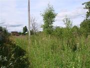 Земельный участок в Теряево - Фото 4