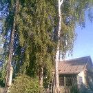 Продам Дом в Венёвском районе с. Медведки+ зем. участок 40 сот. - Фото 3