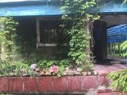 Уютный жилой дом 100м на участке 3,5 га в д. Малинки 140км от МКАД - Фото 2
