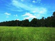 Продам участок 6,93 соток в уютном дачном поселке - Фото 3