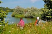 Десногорское водохранилище. Земельные участки на берегу - Фото 4