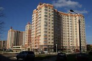 Торговое помещение по ул. Куйбышева 61а (ном. объекта: 1292)