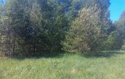 Участок 11 соток, 52 км от МКАД, ПМЖ в д. Асташково, эл-во, соснов.лес - Фото 5