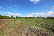 Земельный участок 45 соток, ИЖС в д. Пнево, Малоярославецкого р-на - Фото 1