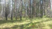 Земельный участок в тихом спокойном месте для релакса - Фото 2