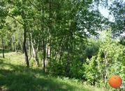 Продается участок, Щелковское шоссе, 95 км от МКАД - Фото 1