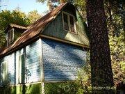 Старый дом на Загорянке лесной участок 30 сот. - Фото 2