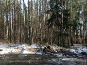 Продажа земельного участка территория бывшего Пансионата в д.Михали - Фото 3