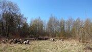 Земельный участок в Курортном районе, 5.4 га - Фото 1
