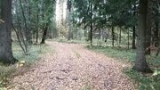 Участок 7 соток в г.Фрязино Щелковского района 20 км от МКАД - Фото 3