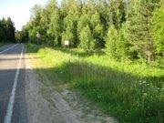Земельный участок под дачное стоит. 100 сот.Духанино.35 км от МКАД - Фото 3