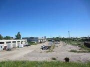 Продам, индустриальная недвижимость, 16000,0 кв.м, область, поселок .