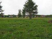 30 соток в д.Ново-Аносово , Клепиковского района, Рязанской области. - Фото 3