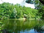 Участок 13 соток в кп Алино, лес, река Ока. Все коммуникации - Фото 3