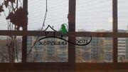 Продается 2х комн квартира с Евро ремонтом Зеленограде, корп. 126, Купить квартиру в Зеленограде по недорогой цене, ID объекта - 317271469 - Фото 20