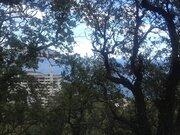 Продажа базы отдыха в Гурзуфе в районе санатория Ай-Даниль. - Фото 5