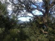 Продается ровный видовой участок в Гурзуфе у подножья Ай-Даниль. - Фото 1