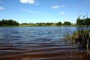 Продаю земельный участок 10 сот. д.Стариково 120 км Новорижское шоссе - Фото 5