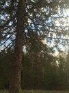 Новая дача в лесу - Фото 2