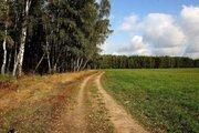 30 соток, лес на участке, 115 км. от МКАД, западное направление. - Фото 2