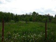 Киевское ш 20 км от МКАД, участок 9 соток, кп Полесье , Брехово ЗАО юв - Фото 2