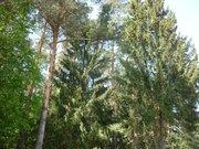 Земельный участок в Клинском районе - Фото 3