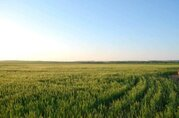 Продается участок 8,87 га в Ростовской области, Красносулинский р-н - Фото 3