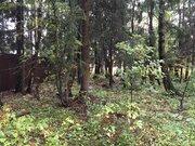 Продается участок, деревня Николо-Черкизово - Фото 4