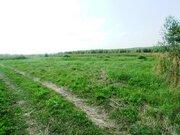 Продается участок 15 соток, д. Кунисниково, 63 км. от МКАД - Фото 4