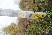 Торопово. ИЖС. ПМЖ. Участок 20 соток газ и электр.по границе - Фото 5