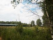 Продаётся участок 11 соток всего 28 км от МКАД по Горьковскому шоссе - Фото 2