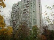Продаётся видовая 1-комнатная квартира., Купить квартиру в Москве по недорогой цене, ID объекта - 316820080 - Фото 12