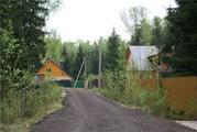 Продается лесной участок, Минское - Можайское шоссе, район Голицыно - Фото 2