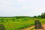 Участок 50 соток вблизи заповедника и реки - Фото 3