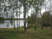 Земля на берегу Десногорского водохранилища в Смоленской области - Фото 4