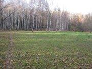 Участок 80 соток ( ИЖС ) в поселке Победа, Мытищинского района - Фото 5