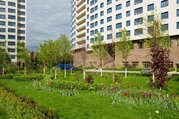 Продается квартира г.Москва, Наметкина, Купить квартиру в Москве по недорогой цене, ID объекта - 314965400 - Фото 8