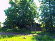 Дом с участком в д. Кожевники, в окружении леса и живой природы. - Фото 1