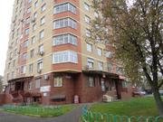 1 комнатная кв в г.Троицк, ул.Полковника милиции Курочкина 5 - Фото 1