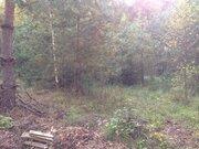 Продается земельный участок 15 соток знп с пропиской на берегу реки - Фото 4