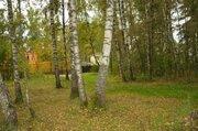 Участок 24 сот, Осташковское ш, 25 км от МКАД, д. Витенево. - Фото 1