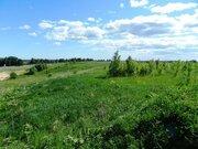 Продажа участка, Канисты, Всеволожский район - Фото 2