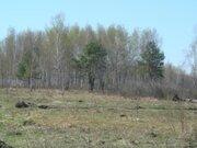 10 соток для жилого дома с правом регистрации 50 км по Егорьевскому ш. - Фото 3