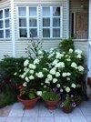 Продаю дачный дом около п.Новый Быт - Фото 1