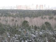 Видовая 4-ех ком квартира в ЖК Крылатский, Купить квартиру в Москве по недорогой цене, ID объекта - 317760305 - Фото 3