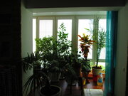 3-х комнатная квартира с евроремонтом - Фото 3