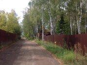 Лесной участок 15 соток в обжитом шикарном месте 5 км от г. Чехов - Фото 5
