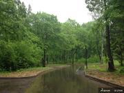 Земельный участок в Новолеоново поселок-парк - Фото 4