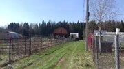 Калугино участок 5 соток в лесу - Фото 4