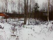 Садовый участок 8 сот. Ладога, Снетковское - Фото 4